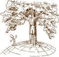 Per un albero in più